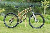 Wood-Bicycle